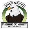 Falknerei Pierre Schmidt